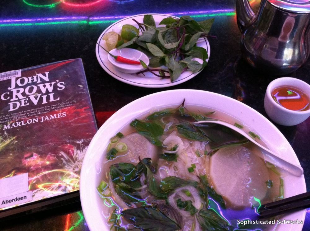 ...and yet another great book I just finished along with my meal of choice during this time of the year...a nice hot bowl of pho! ~in Vancouver, British Columbia - Canada~