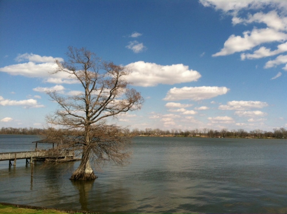"""We spent many summers at Lake Chicot...""""the largest oxbow lake in North America and the largest natural lake in Arkansas, formed 600 years ago. It's a run off from the Mississippi River""""."""